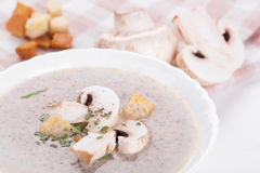 Mushrooms cream soup Stock Photos