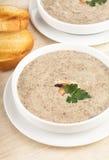 Mushrooms cream soup Stock Photography