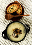 Mushrooms Cream Soup Stock Image