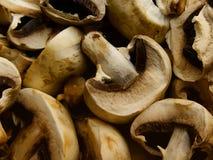 Mushrooms  crude  fresh Royalty Free Stock Images