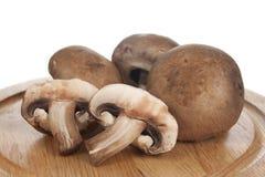 Mushrooms on Cutting Board Stock Image