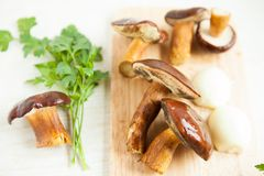 Mushrooms on a cutting board and parsley Royalty Free Stock Photos