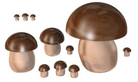 Mushrooms 3d Stock Photography