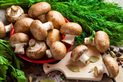 Mushrooms, dill and spices on  table. Royalty Free Stock Images