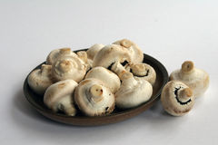 Mushrooms on earthenware plate. With white background Stock Photo