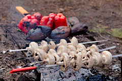 Mushrooms, eggplants and red pepper on bbq grill Royalty Free Stock Photos