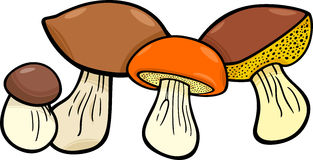 Mushrooms food objects group Royalty Free Stock Images