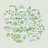 Mushrooms and forest herbs Stock Image