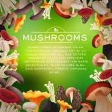 Mushrooms frame Royalty Free Stock Photography