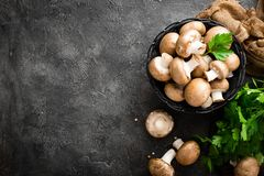 Mushrooms. Fresh mushrooms in basket. On table stock photos
