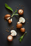 Mushrooms. Stock Photography