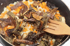 Mushrooms fried on the pan with carrot and onion Royalty Free Stock Photography