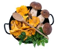 Mushrooms in frying pan Stock Photos
