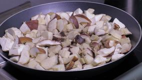 Mushrooms on the frying pan stock video footage