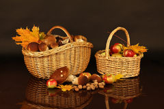 Mushrooms. Full basket of edible mushrooms and a basket of apples Stock Image