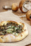 Mushrooms galette, selective focus Royalty Free Stock Photos