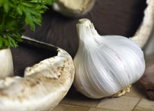 Mushrooms and Garlic Stock Image