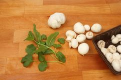 Mushrooms garlic and herbs. Baby button mushrooms with garlic, mint and coriander on a wooden chopping board stock photos