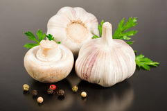 Mushrooms with garlic and spice and parsley Royalty Free Stock Photography