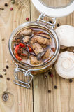 Mushrooms (grilled Antipasti) Stock Images