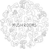 Mushrooms hand drawn doodle vector illustration. Mushroom hand drawn sketch vector illustration. Fresh organic mushrooms isolated on white Royalty Free Stock Image