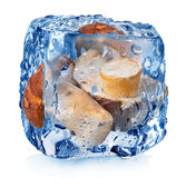 Mushrooms in ice cube Royalty Free Stock Images