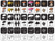 Mushrooms icons on black and white Royalty Free Stock Images