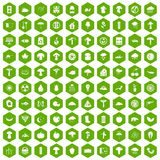 100 mushrooms icons hexagon green. 100 mushrooms icons set in green hexagon isolated vector illustration Stock Photo