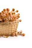 Mushrooms In A Basket Stock Image