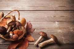 Mushrooms In Basket On Wooden Background Royalty Free Stock Images
