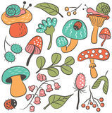 Mushrooms and insects doodle icon set Stock Images