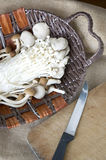 Mushrooms with knife Stock Image