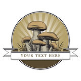 Mushrooms logo Royalty Free Stock Photos