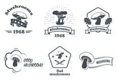 Mushrooms logo set. Design elements, icons, emblems and badges  on white background. Vector set of hand drawn forest camp labels in vintage style. Design Royalty Free Stock Images