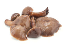 Mushrooms marinaded Stock Images