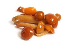 Mushrooms marinaded (agaric honey) Royalty Free Stock Images