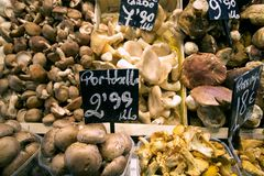 Mushrooms market. Partial view of a stall mushrooms Royalty Free Stock Image