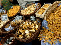 Mushrooms on the market. In Amsterdam royalty free stock image