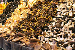 Mushrooms on market stall Stock Photography