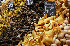 Mushrooms on market stall. Close up of fresh mushrooms for sale on market stall stock image