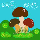 Mushrooms in the meadow Royalty Free Stock Photos
