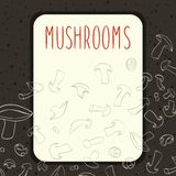 Mushrooms menu design Stock Photo