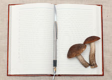 Mushrooms and notebook. Mushrooms, fountain pen and notebook lie on cloth Stock Photography