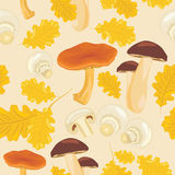 Mushrooms and oak leaves. Seamless background stock photo