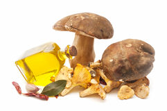 Mushrooms and olive oil Royalty Free Stock Photo