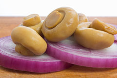 Mushrooms and onions Stock Images