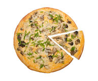 Mushrooms and onions pizza Royalty Free Stock Images