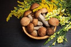 Mushrooms. Organic food ingredients Royalty Free Stock Photo