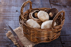 Mushrooms over rustic wooden background Stock Photography