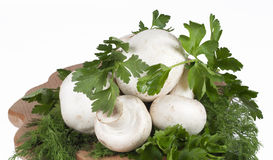 Mushrooms, parsley and dill. On the kitchen blackboard Stock Images
